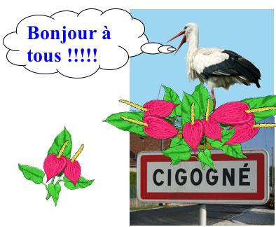 Accueil-Loisirs/lacigognefleurie.jpg