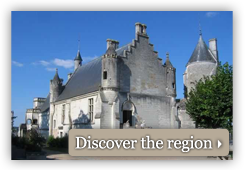 Discover the castles of the Loire Valley region