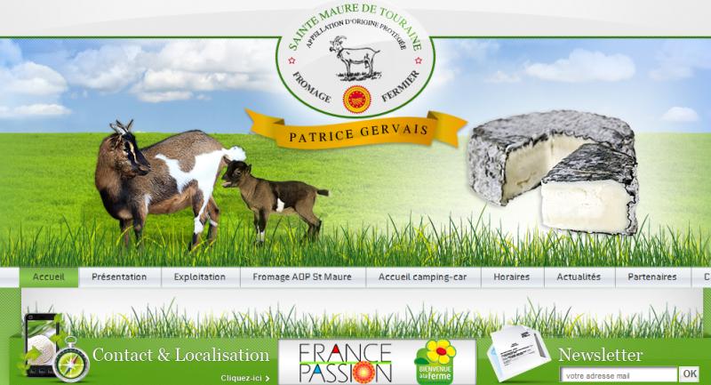 Vue du site internet page accueil P. GERVAIS